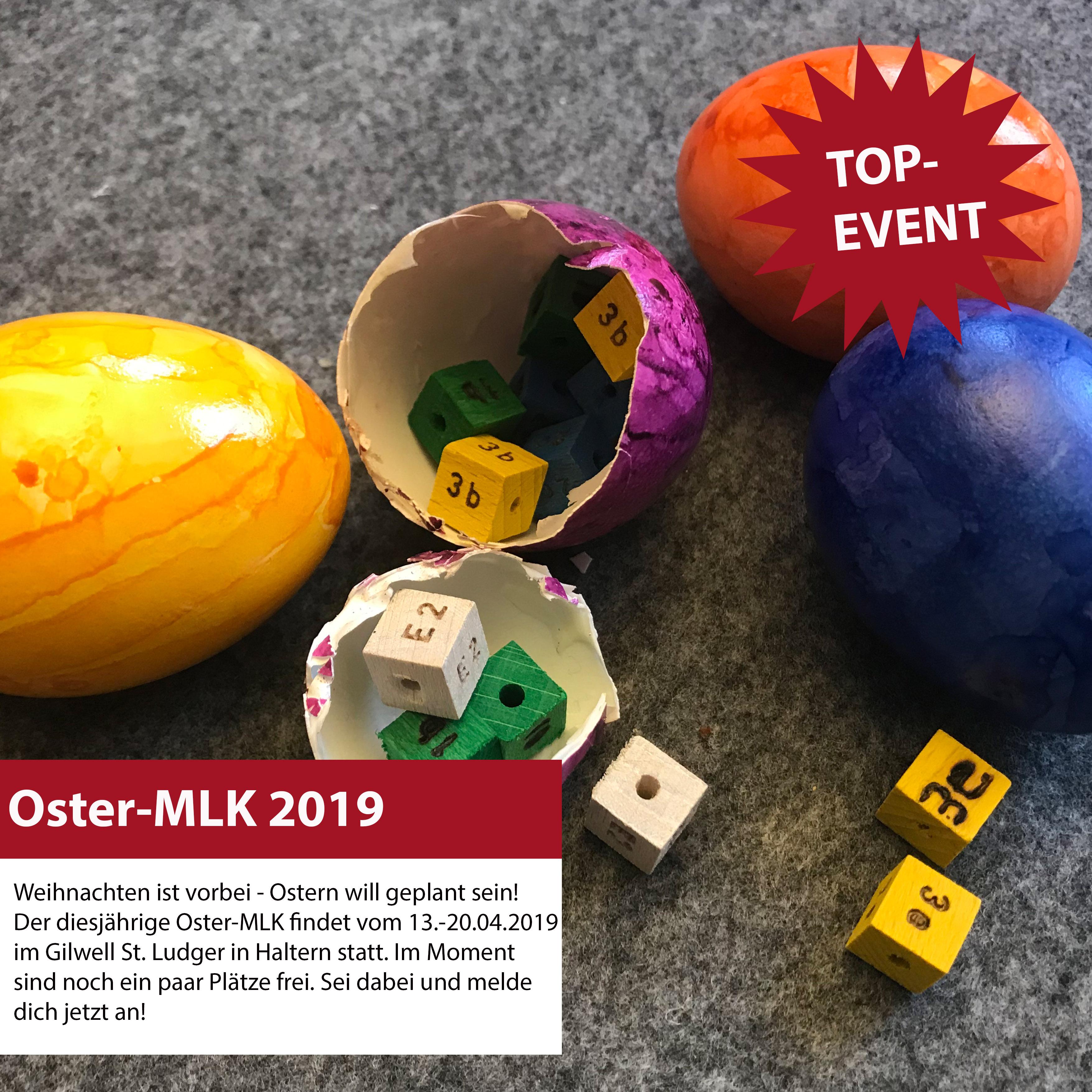 OsterMLK_TopEvent.jpg